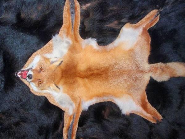 Выделка лисы