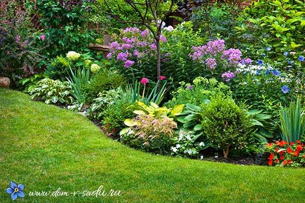 Топ-30 долгоцветущих многолетников для сада с названиями, описаниями и фото