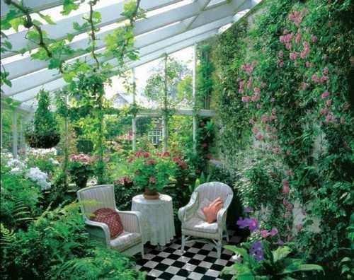 Оформление зимнего сада и уголка в квартире