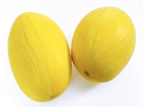Как хранить дыню дома: свежие плоды, заморозка и сушка, видео