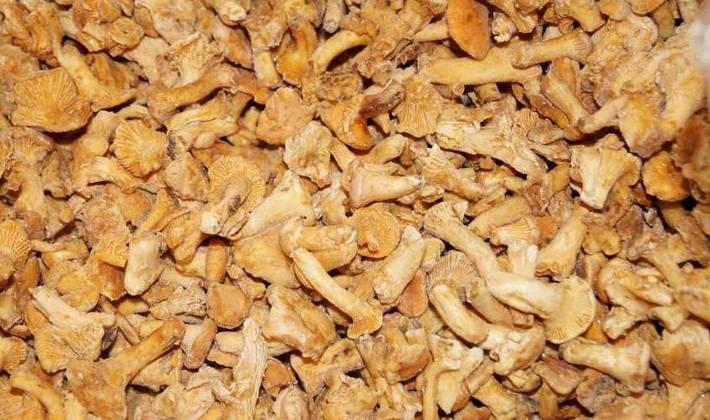 Домашние полуфабрикаты для заморозки, быстрого приготовления из мяса, фарша. рецепты