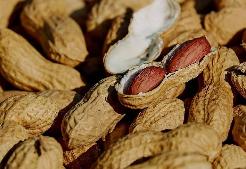 """""""арахис — польза и вред для нашего организма, калорийность и способы приготовления"""""""