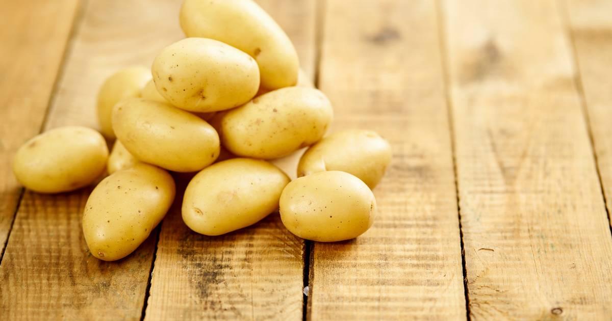 Как вырастить два урожая картофеля за сезон видео