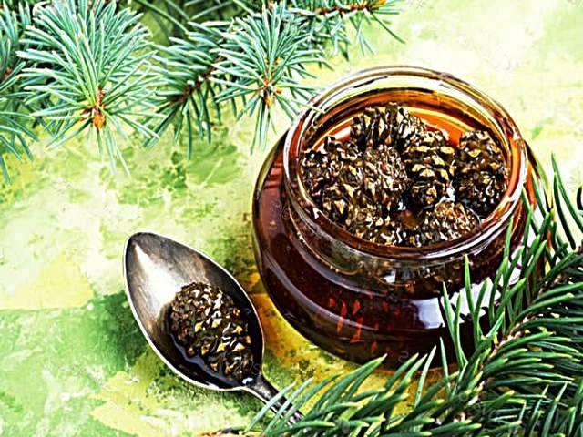 Варенье из сосновых шишек - 5 рецептов с фото пошагово