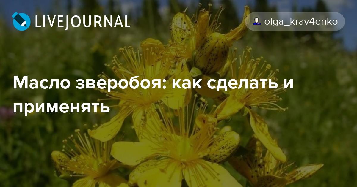 Солнечное масло из цветков зверобоя