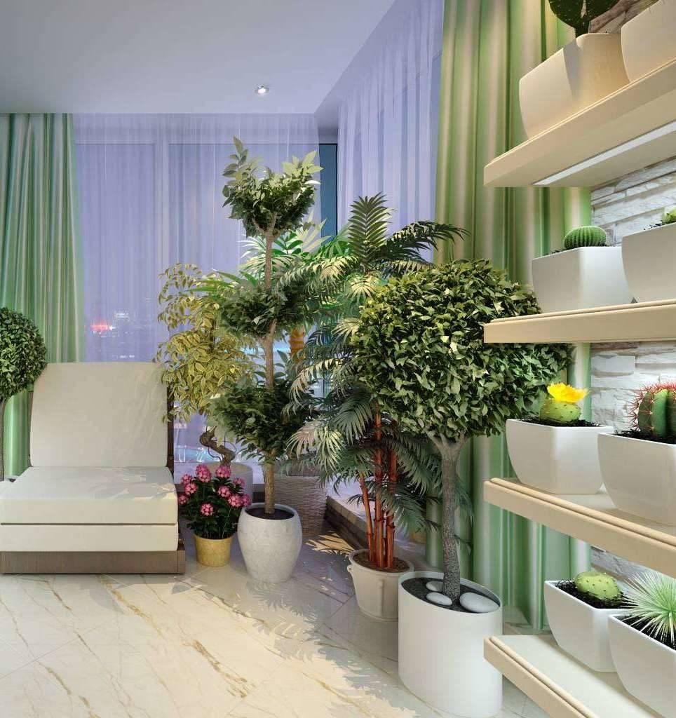 Зимний сад в доме – выбор конструкции, советы как построить и рекомендации по обустройству