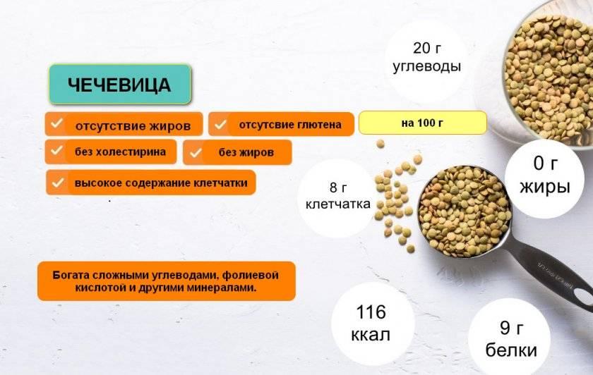 Состав чечевицы и польза, какой вред может нанести здоровью