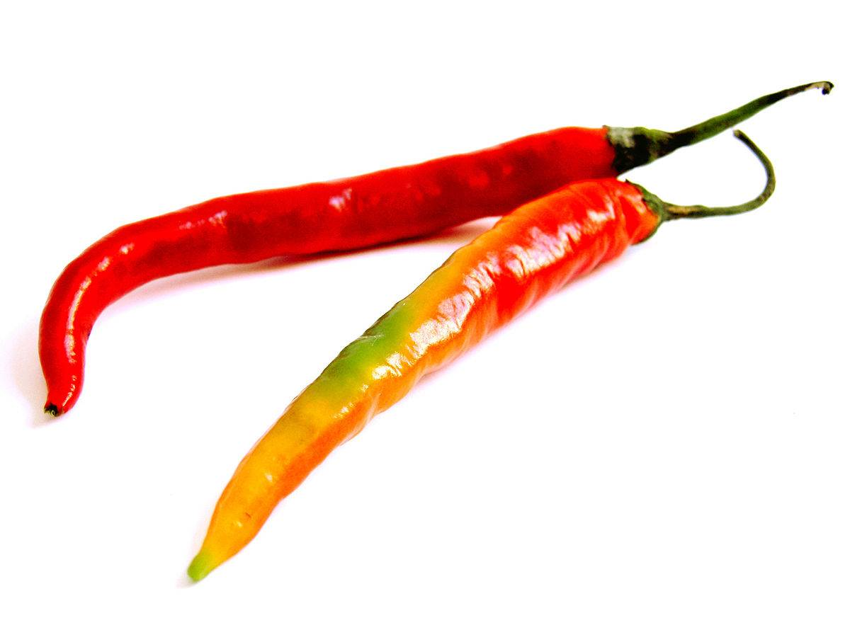 Острый красный перец чили: его польза и вред, советы по применению и меры предосторожности