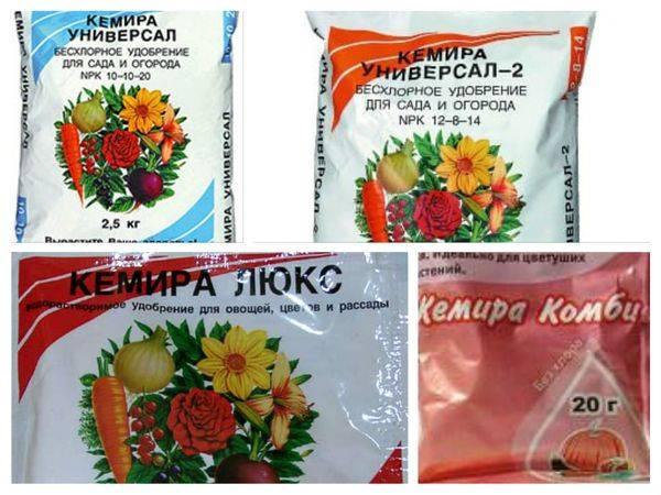 Абсолютно безвредное химическое удобрение для томатов — кемира люкс: инструкция по применению