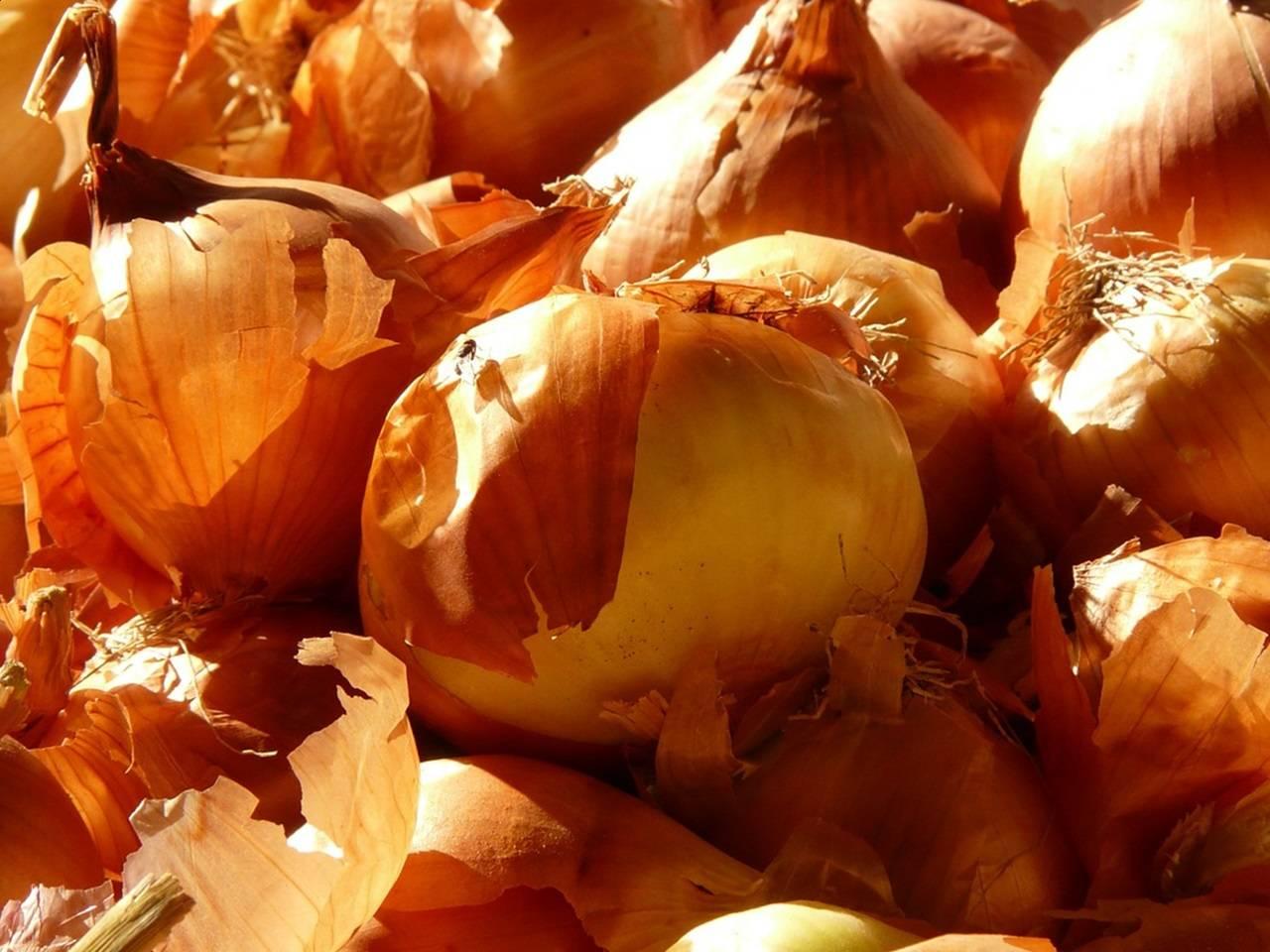 Лечение аденомы простаты луковой шелухой