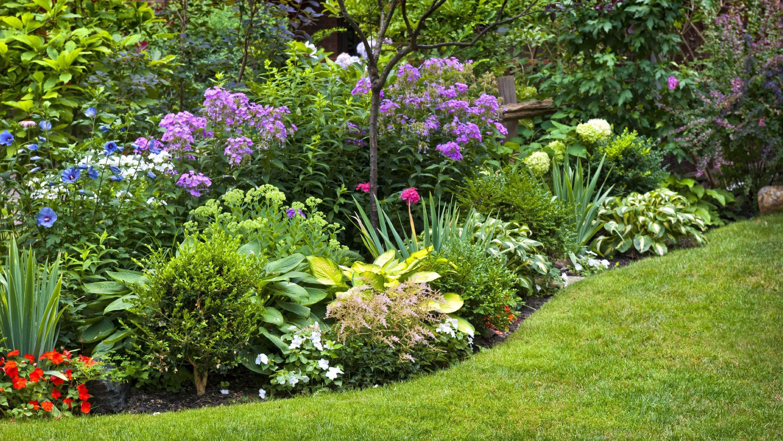 Непобедимый двор: 8 идей для ленивого озеленения