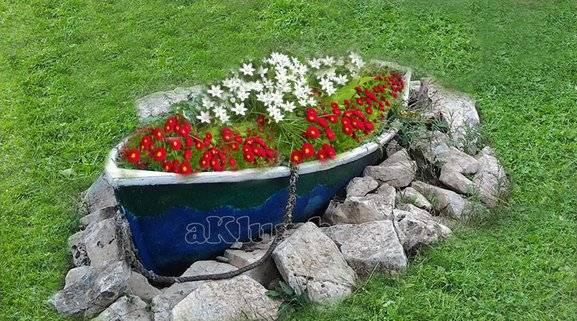 Левкой (маттиола): использование в дизайне сада, подбор растений-партнеров