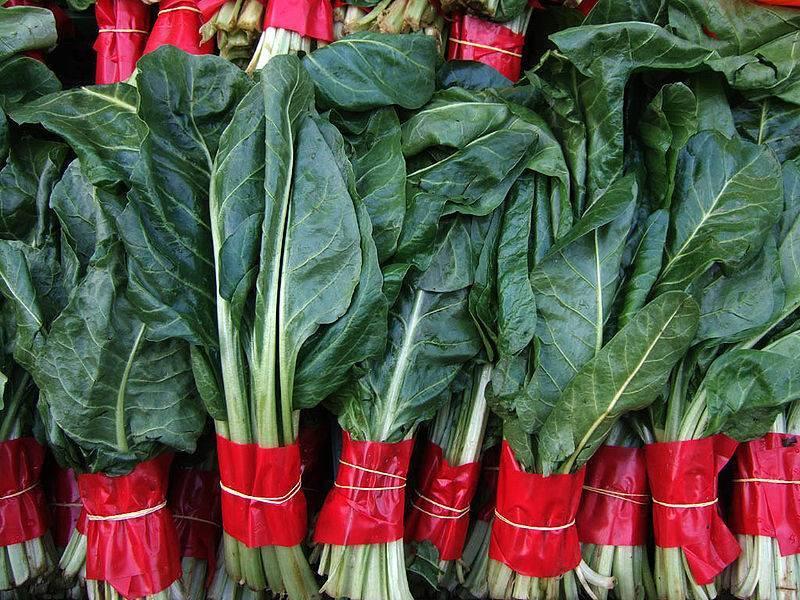 Выращивание и уход за мангольдом, как получить хороший урожай листовой свеклы