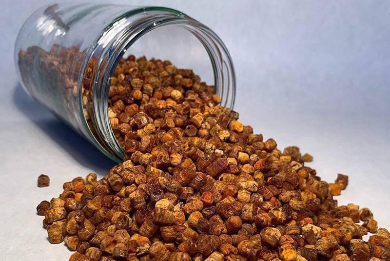 Пчелиная перга — польза, вред и как принимать
