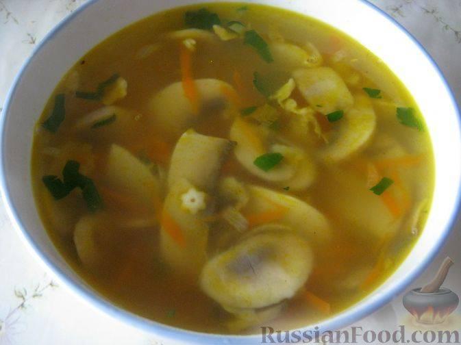 Грибной суп - 205 домашних вкусных рецептов приготовления