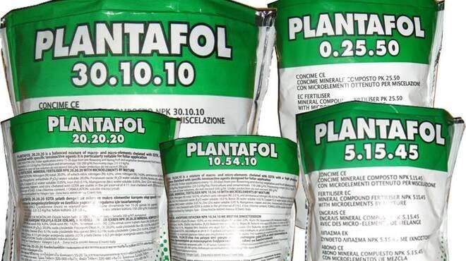 Удобрение Плантафол для подкормки винограда