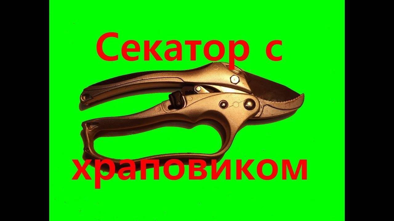 Секатор mr logo