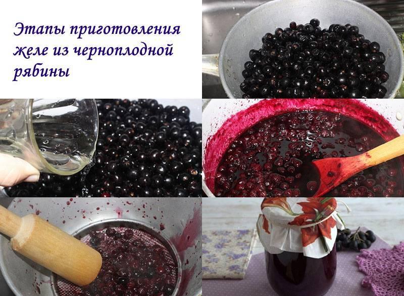 Черноплодная рябина на зиму - 5 рецептов приготовления с фото пошагово