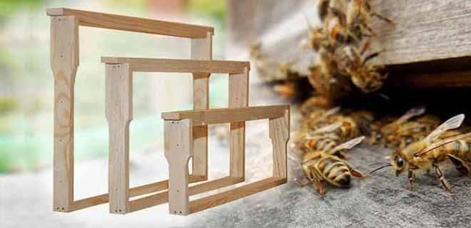 Улей дадан – устройство, чертежи, размеры улья и рамки