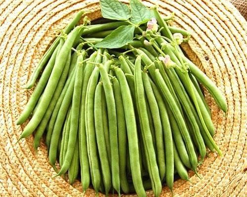 Фасоль: польза и вред для здоровья, калорийность, рецепты