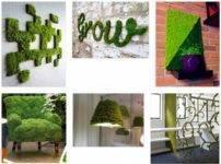 Живой мох в интерьере: идеи декора, советы по уходу