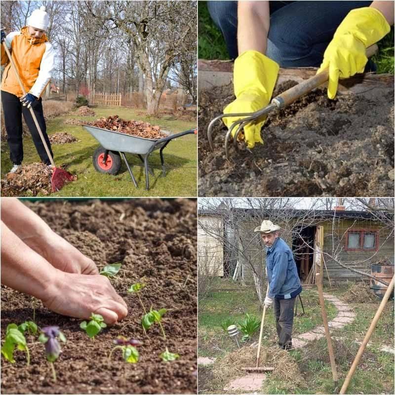 Работы в саду и на огороде в апреле: что нужно сделать?