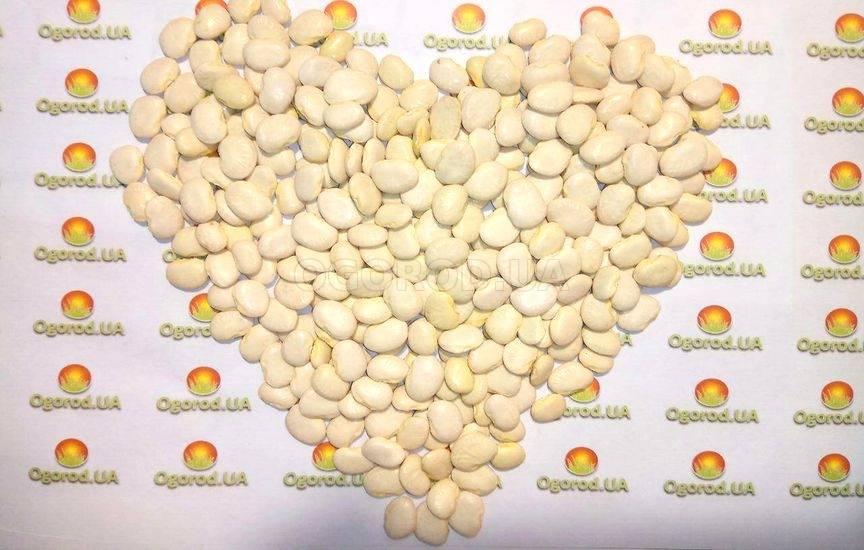 Фасоль лимская сладкий боб