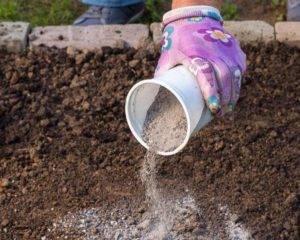 Зола как удобрение – отличный результат без затрат