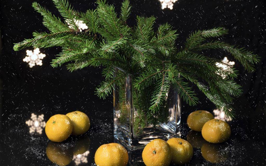Растения-символы нового года и рождества в разных странах