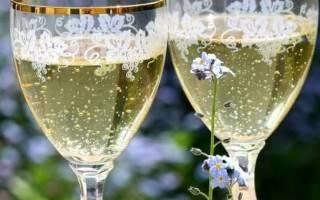 Шампанское из виноградных листьев в домашних условиях, рецепт приготовления игристого вина, видео