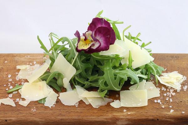Салат руккола: польза и вред для организма
