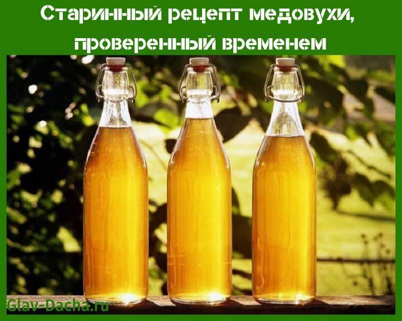 Старинный рецепт медовухи, проверенный временем