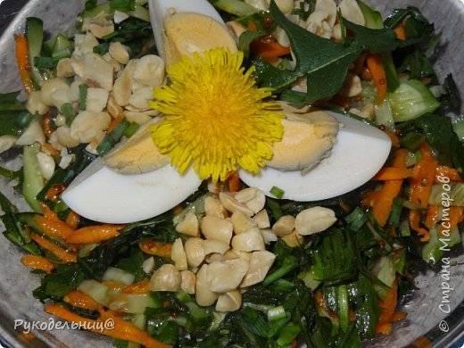 Рецепты приготовления полезных для организма салатов из одуванчиков