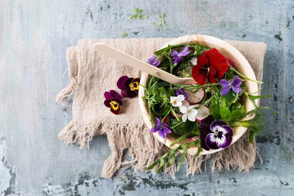 Применение цветов в кулинарии