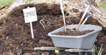 Гранулированный конский навоз – как использовать как удобрение