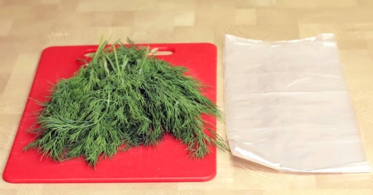 Петрушка — способы заготовки на зиму, заморозка, с солью, сухая, видео