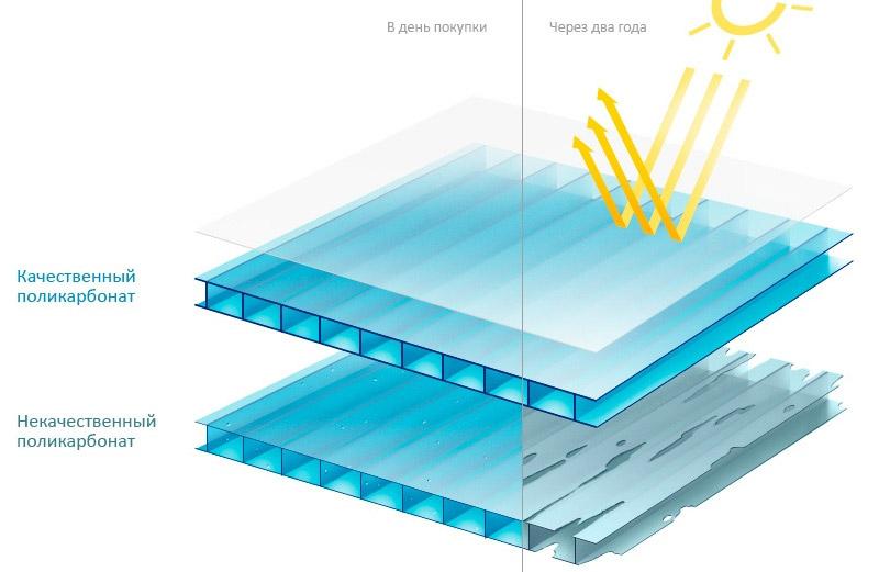 5 шагов к выбору качественного поликарбоната для теплицы