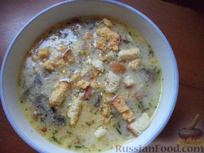 Грибной суп с сыром - 35 домашних вкусных рецептов приготовления