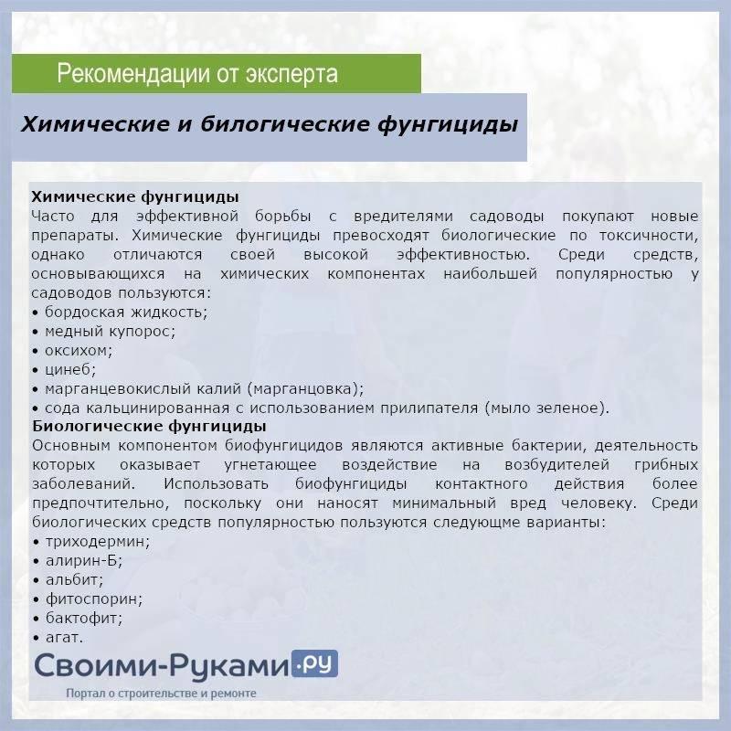 Оксихом (фунгицид): применение для помидоров, огурцов, аналоги, как разводить, отличие от хом