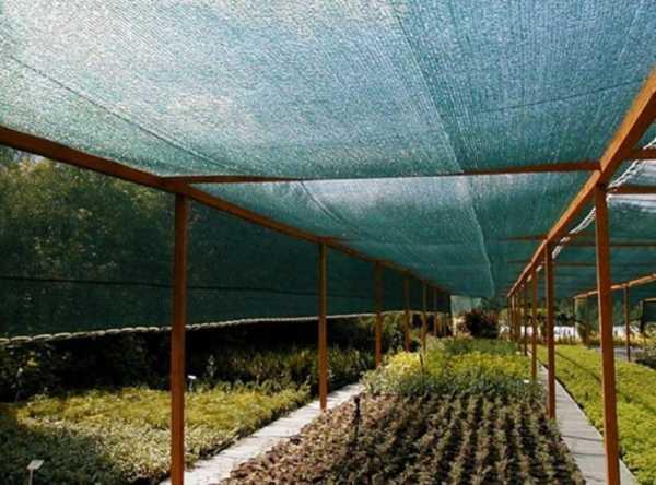 Зачем нужна сетка затеняющая для теплиц и навесов?