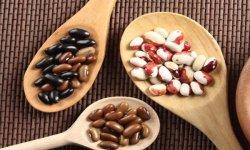 Фасоль: видовое и сортовое разнообразие
