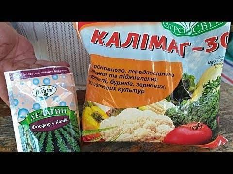 Калийные удобрения для томатов — названия и применение