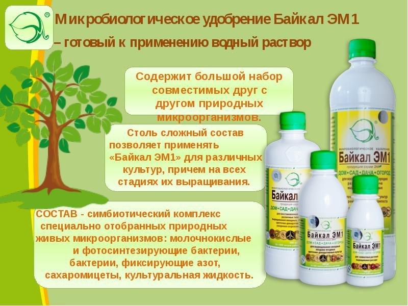 Микробиологическое удобрение «байкал эм-1»: инструкция по применению