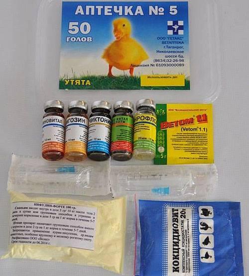 Лечение кокцидиоза. соликокс, ампролиум, фуразолидон, эйметерм | золотой гребешок