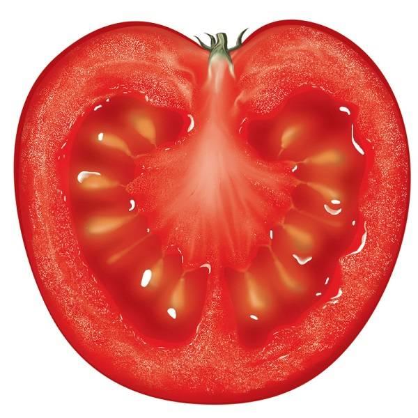 Мишка косолапый томат