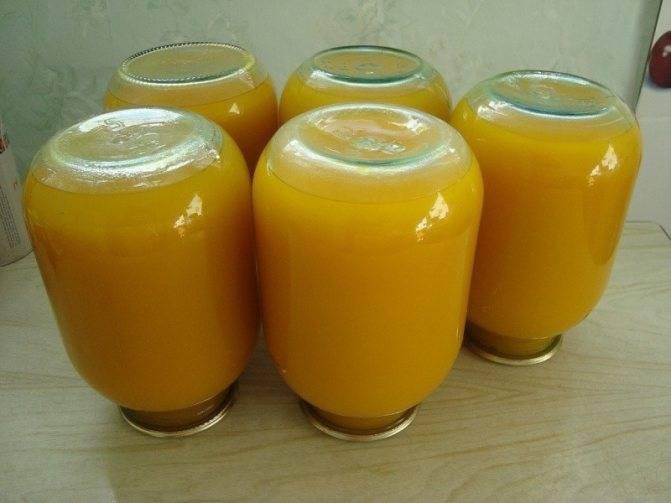 Тыквенный сок с апельсинами на зиму – витаминный заряд! рецепты сока из тыквы с апельсинами для солнечного настроения