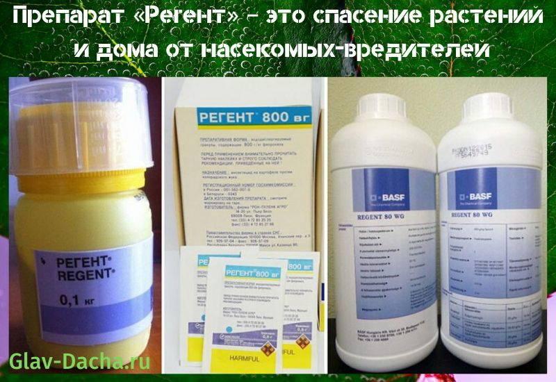 Инструкция по применению и нормы расхода инсектицида престо
