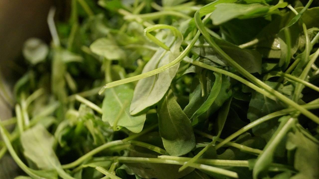 Популярная пряность — базилик. куда его добавляют, как применяют и другие полезные секреты