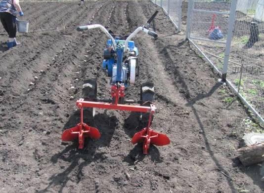 Мотоблок при посадке картофеля