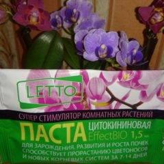 Подкормка орхидей: критерии, методы, средства.